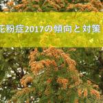 花粉症2017の傾向と対策は?