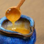 猫がハチミツを食べても大丈夫?ボツリヌス中毒の治療と予防について